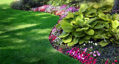 Evergreen Turf Management Inc Services